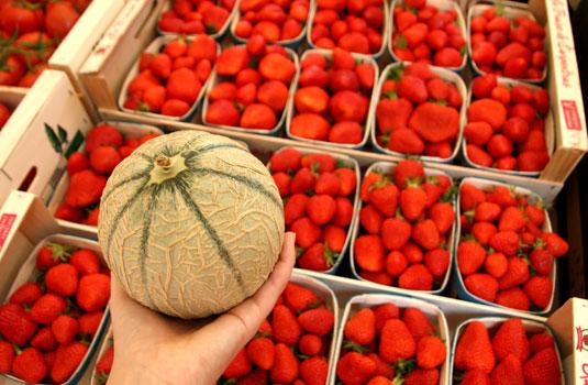 Melon de Cavaillon @ Valiz Storiz