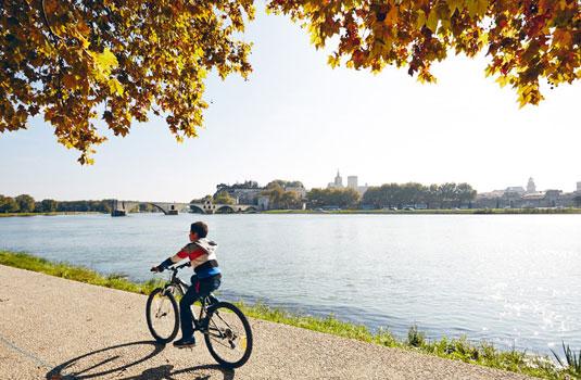 Vélo sur l'île de la Barthelasse à Avignon