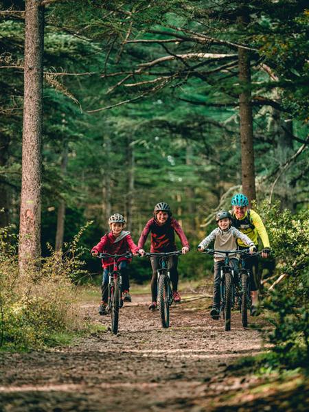 Famille à vélo dans les massifs forestiers du Vaucluse