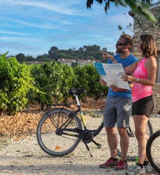 Vélo, vignes et via Rhona